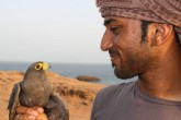 Waheed with a Sooty Falcon