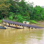 The Peruvian Amazon Expedition
