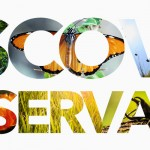 The Idea Behind Discover Conservation