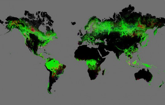 Google Earth Deforestation Lead 537x342