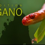 Introducing Expedition Angano [VIDEO]