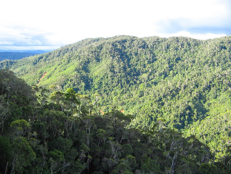 Madagascar 200704