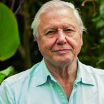5 Things that Ordinary People Could Learn from David Attenborough