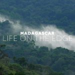 Madagascar: Life on the Edge Trailer