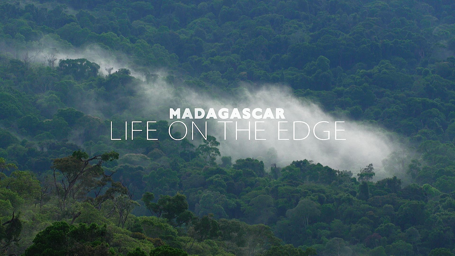 Madagascar Life On The Edge